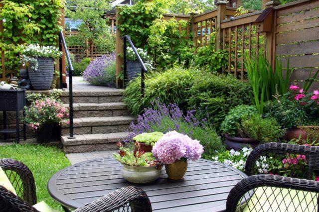 Kleine Tuin Inrichten : Een kleine tuin inrichten hoe doe je dat ik woon fijn