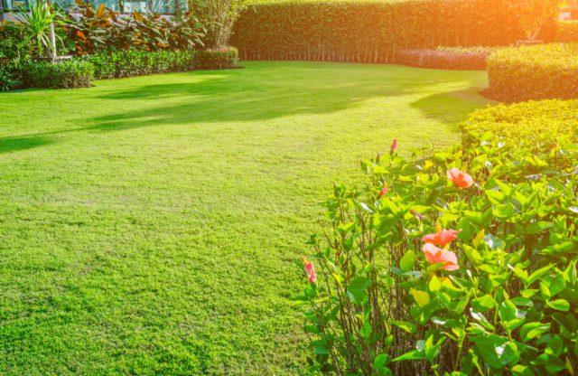 Ongekend Zo maak je je tuin onderhoudsvrij   Ik woon fijn ER-03