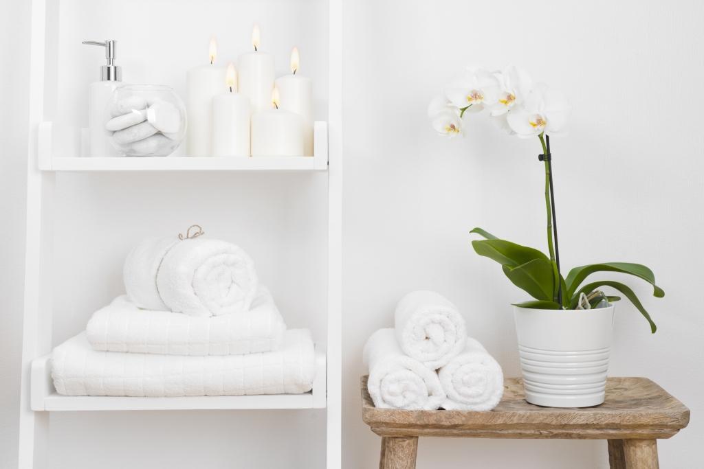 Dit Zijn De Beste Planten Voor In Je Badkamer Ik Woon Fijn