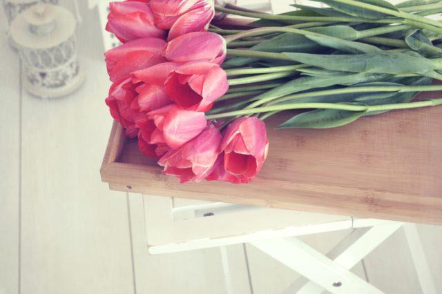 bloemen lente