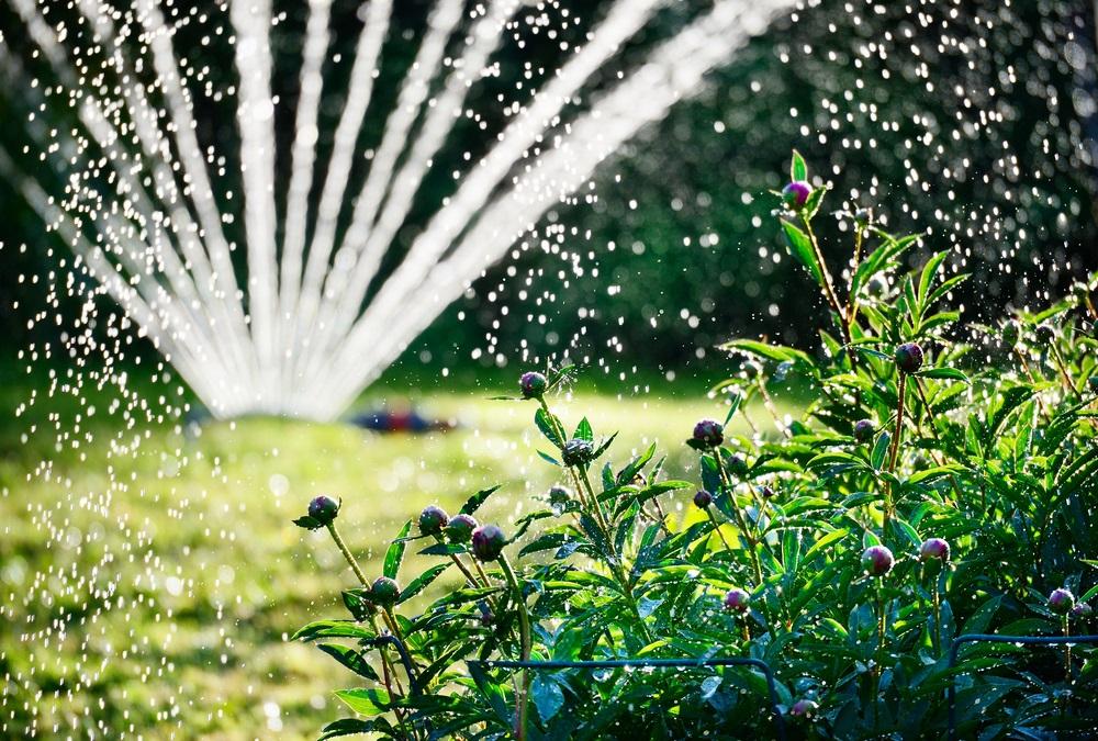 Besproei de tuin in droge perioden