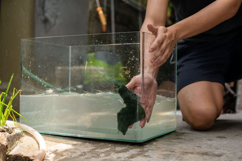 aquarium glas schoonmaken