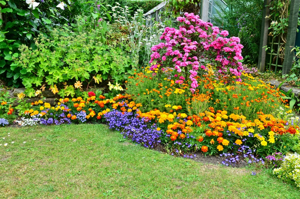 bloemenborder aanleggen
