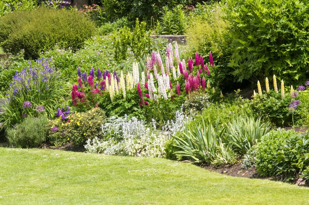 tuinborder aanleggen