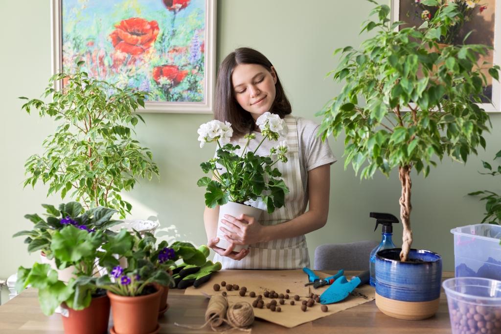 kamerplanten voeding geven