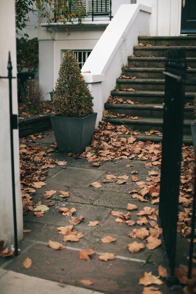 bladeren op gras laten liggen